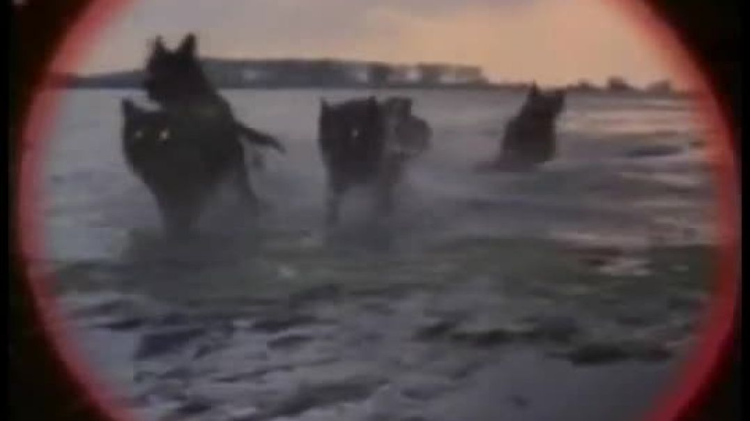 Airwolf Pilots Action Edit The Dogs of War