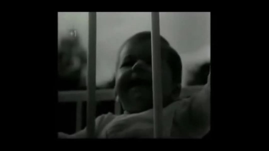 Norwegian War Crimes on Children Lebensborn
