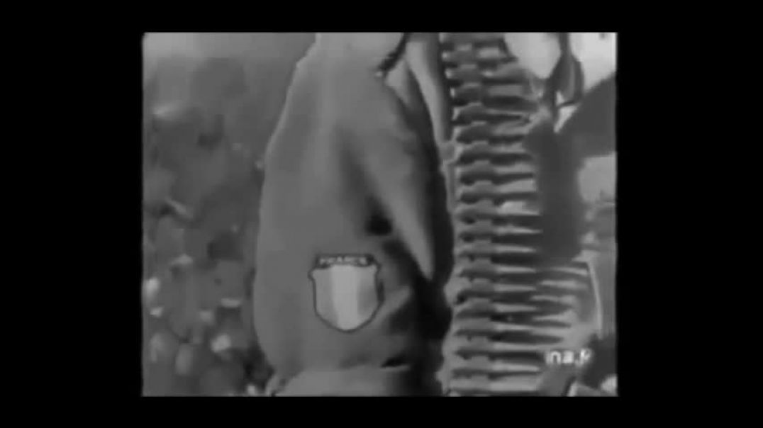 Tribute To The French Volunteers Of The Waffen SS
