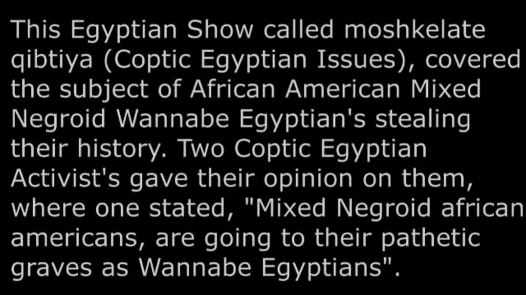 Arabs In Egypt React To Niggers Trying To Steal Aryan History And Heritage