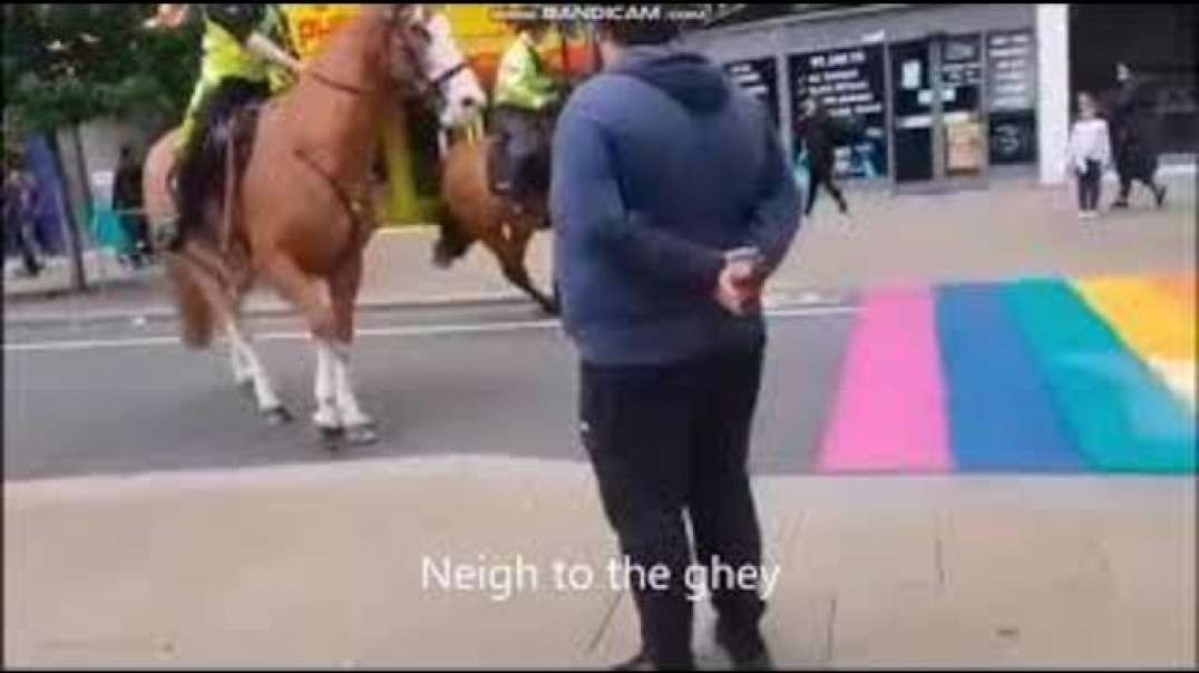 Neigh to the gHEY