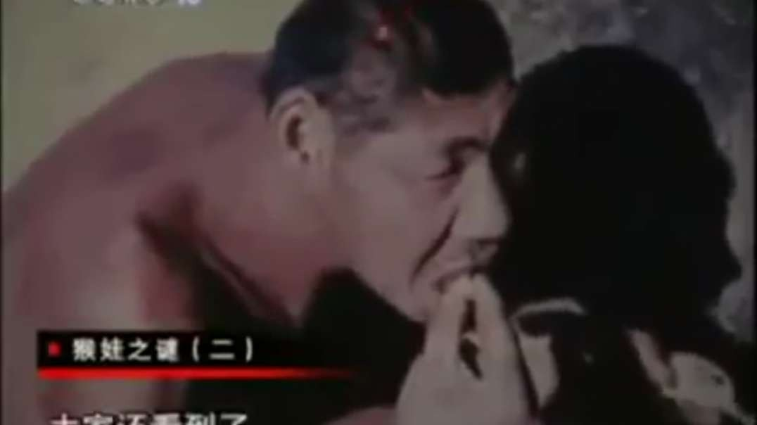 Alleged Human Hybrid in China (old)