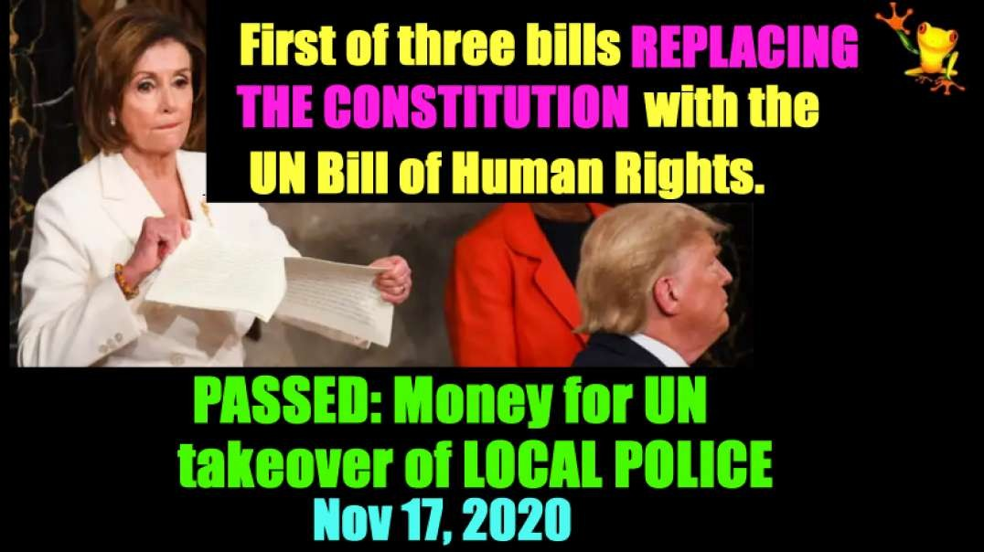 First of 3 bills REPLACING THE US CONTITUTION 11/17/2020