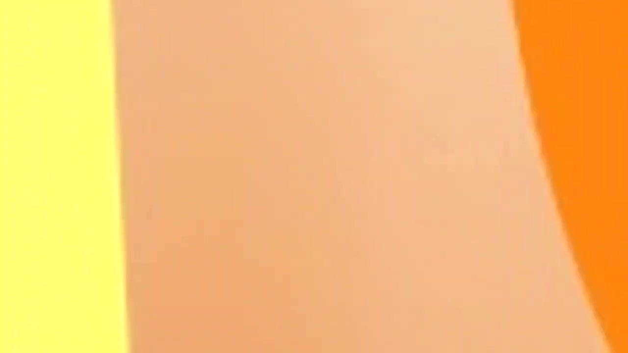The Anti Dog Youtube Community