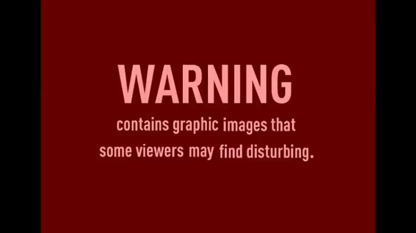 Adolf Hitler The Greatest Story Never Told Part 2/2
