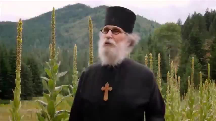 JEWS SAY THE HOLOCAUST IS A HOAX