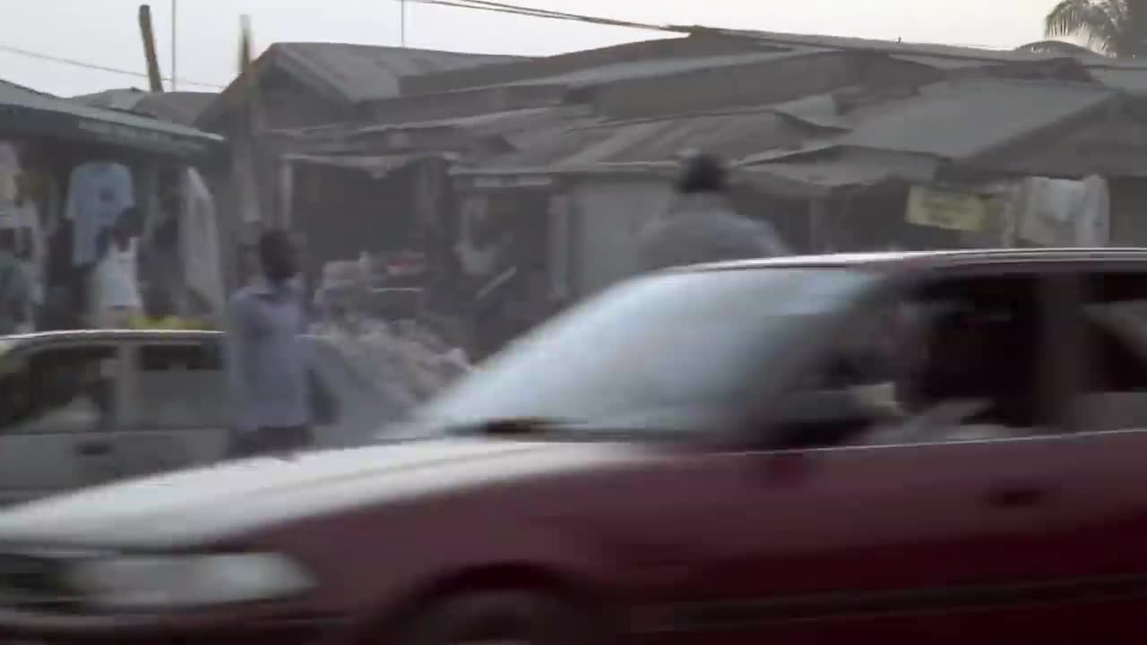 Animal Gangs of Nigeria - Beasts of the Field Abusing Creation