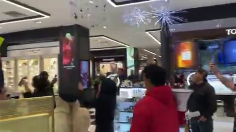 Anti-muzzle protesters at a shopping mall in Los Angeles