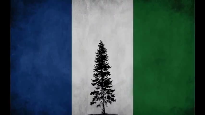 Why The Northwest Front Is An Organism And Not A Organization By Harold Covington.