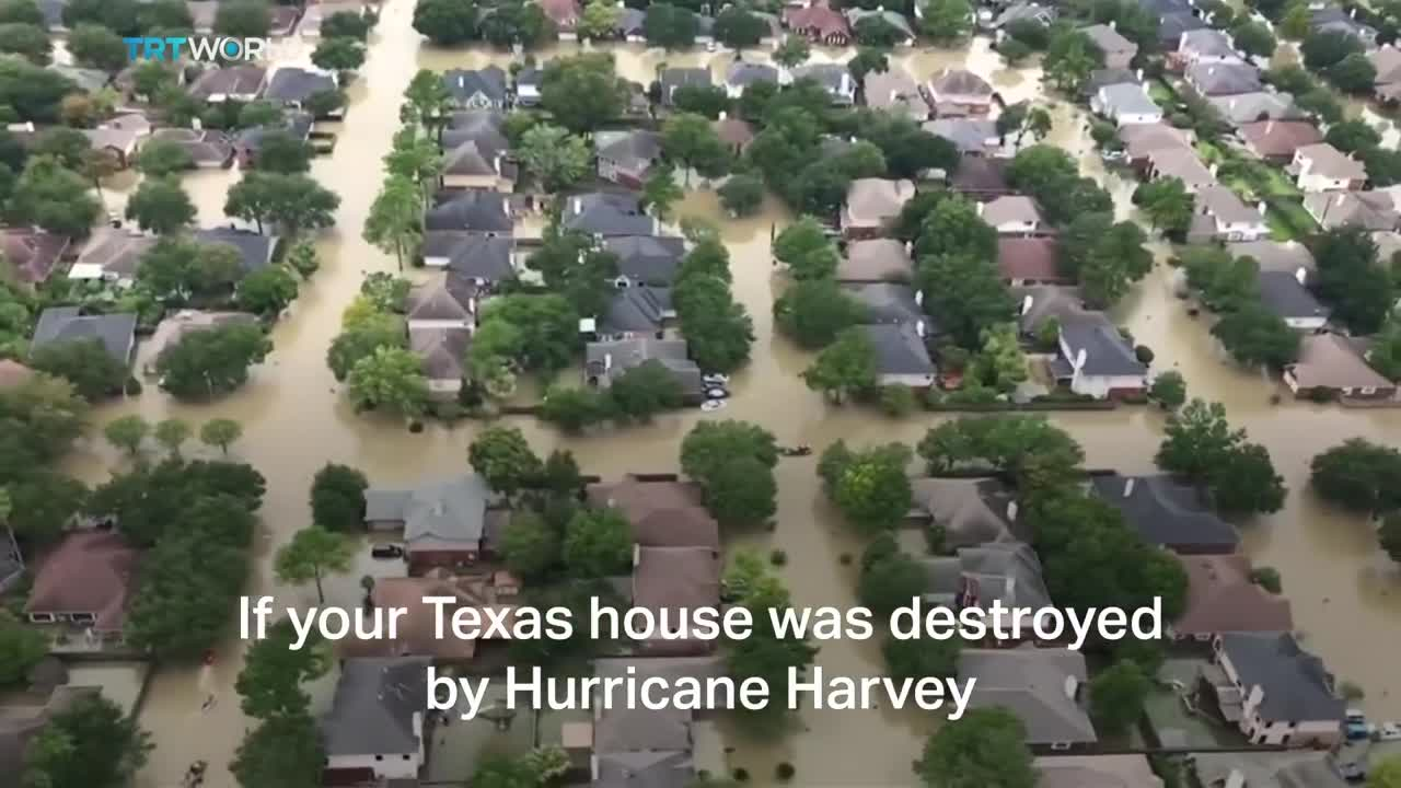 Boycott Israel No US state jobs or aid for you