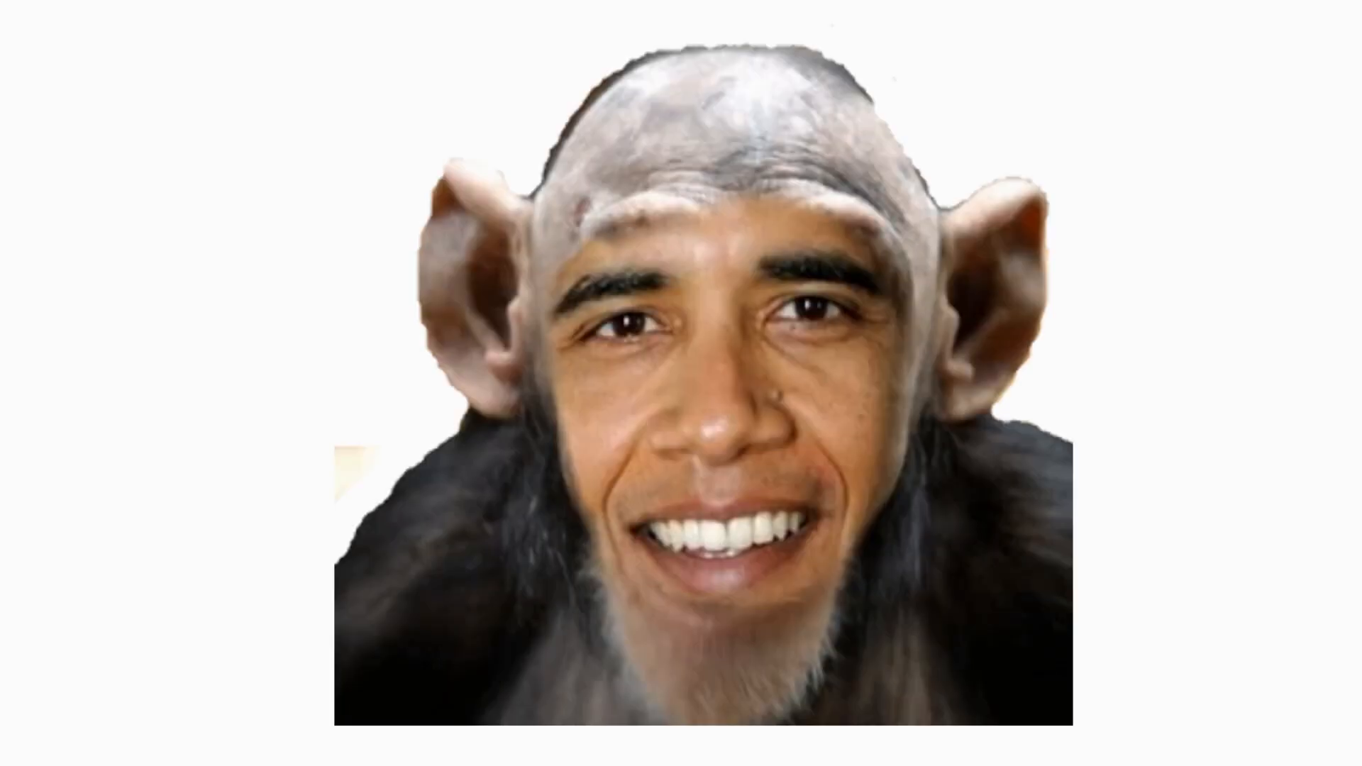 White Lightning - Obama is a Monkey HE Aint my President.
