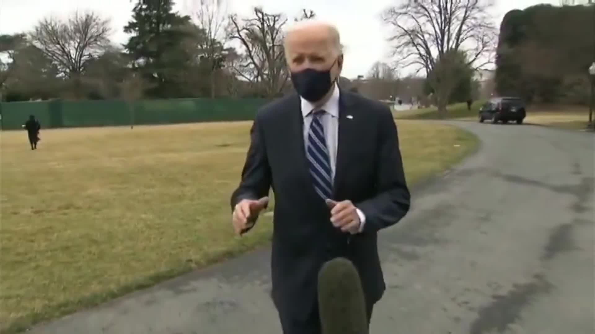 Explained: Why This Video of Biden and a Dead Cat Looks Fake, but Isn't. by Mick West