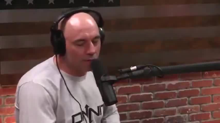 JOE ROGAN CAN'T WAIT FOR WHITE GENOCIDE
