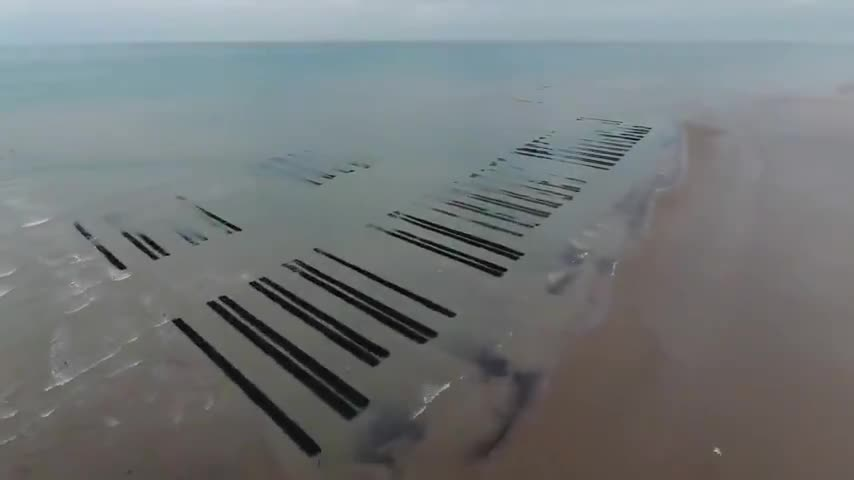 ☘️Ancient Brittania & Scandinavia:  Doggerland (By: History Time)