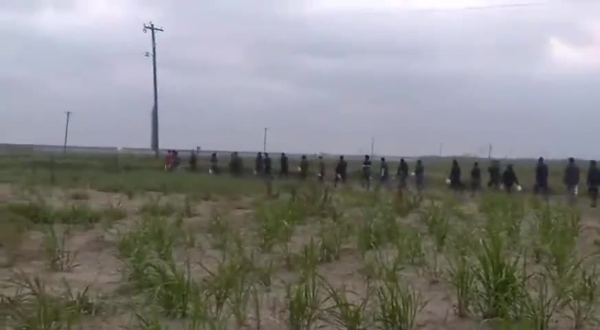 42 Migrants Apprehended by Border Patrol in South Texas!! Enjoy your Hotel stay!
