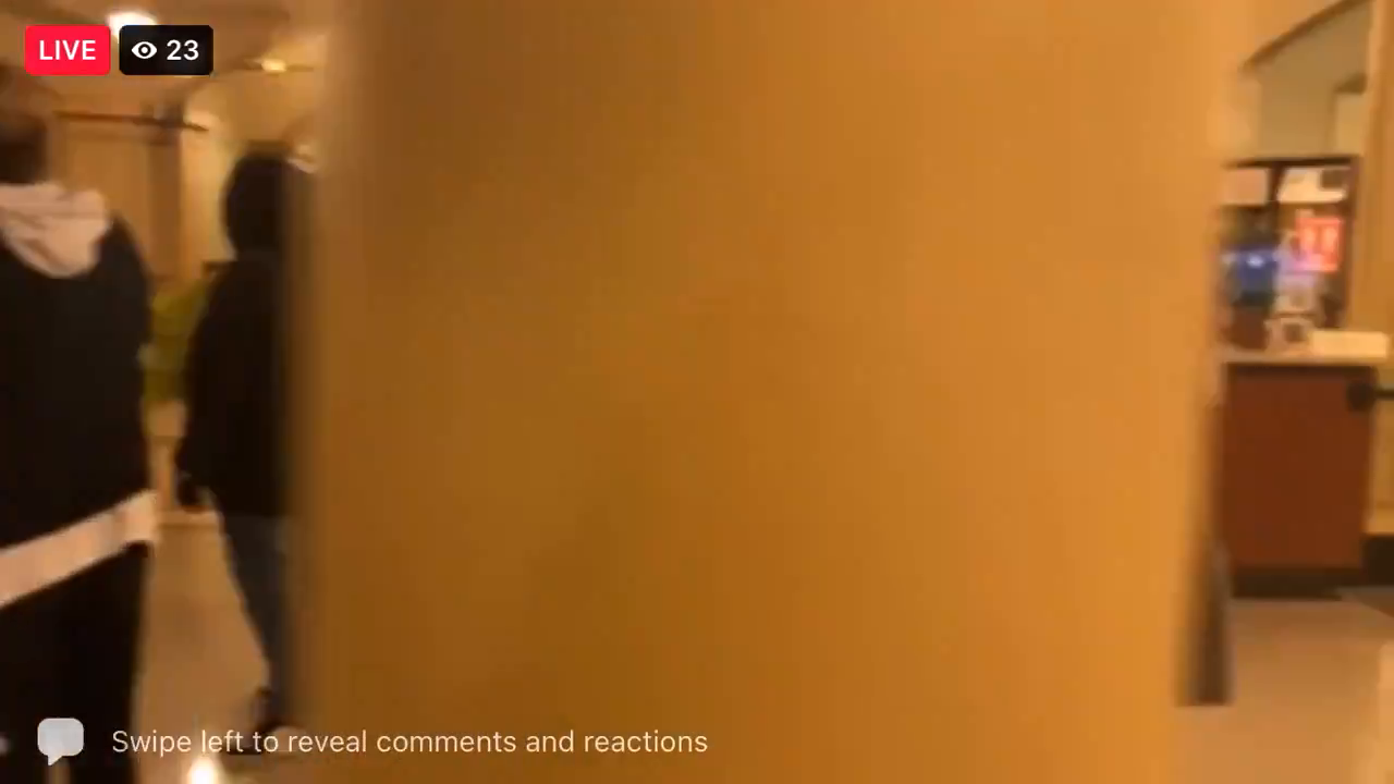 Part 2 The Fake Arrests  - BLM has forced their way into the Capitol Apr 8!