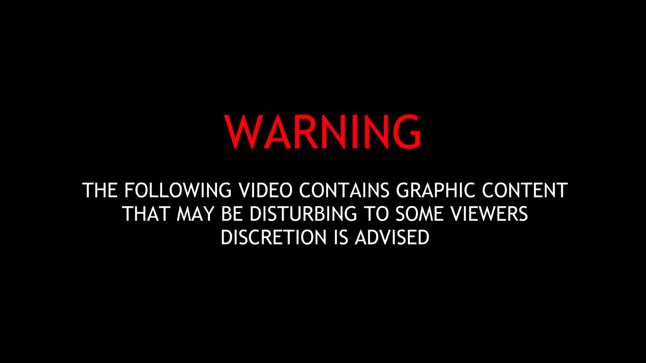 Grand Theft Auto for Real - Another dumbass nigga getting shot