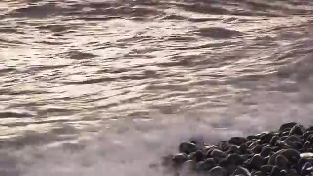 Iceland - Home of Europe's Strongest Horses