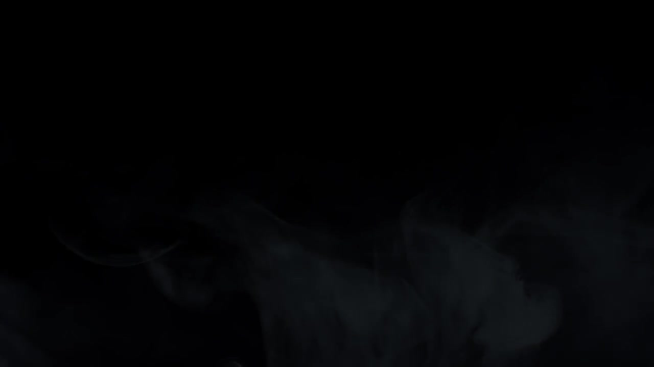 Public Opinion by Walter Lippmann Audiobook