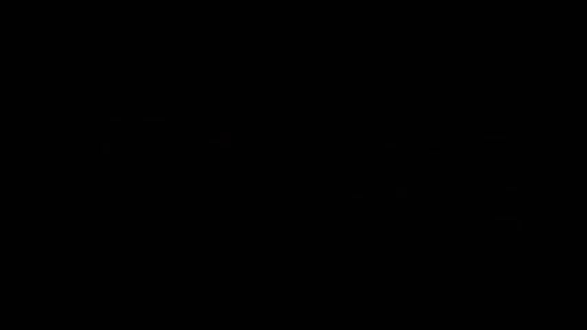 The Truth About Heinrich Himmler