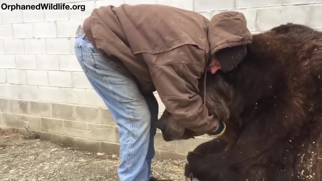 When your bear had a hard day and needs some extra love
