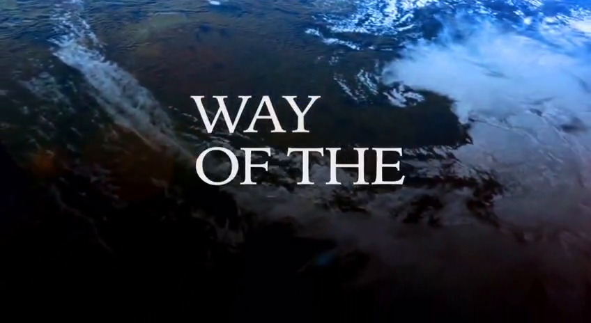 Way of the World - The Left Will Eat Itself
