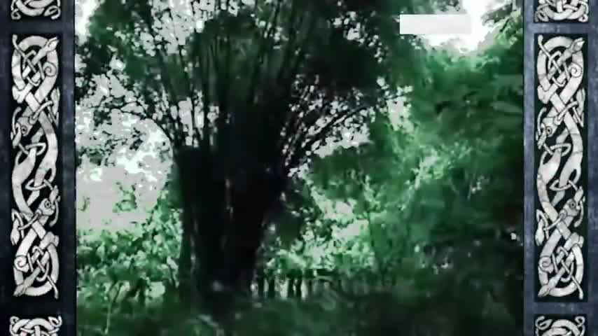 king leopolds ghost lie revisionist history