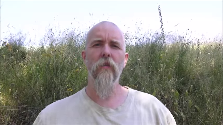 About the European Genocide