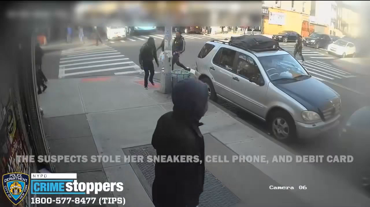Niggercrime - 15 year old girl attacked by nigger gang