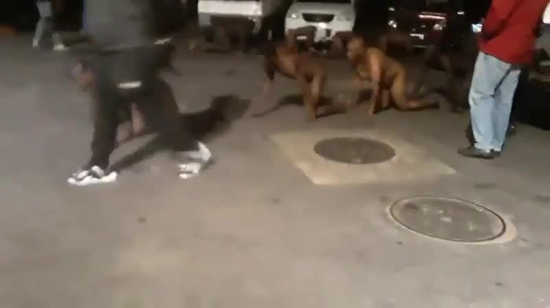 Looters captured by business owners in South Africa stripped naked and made to crawl around in humiliation for their behaviour.