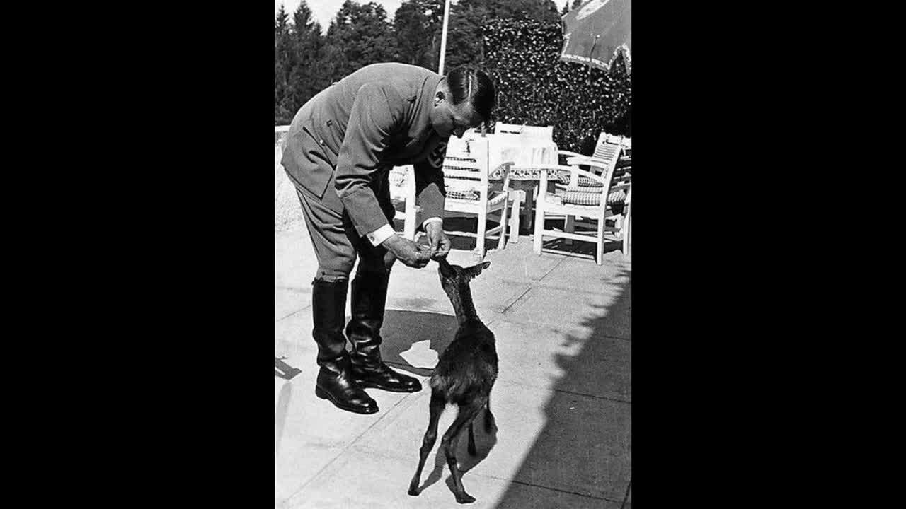 When you learn the truth about Hitler