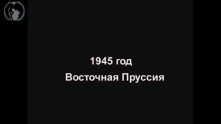 Russian veteran recalls their crimes during WW2 in Germany