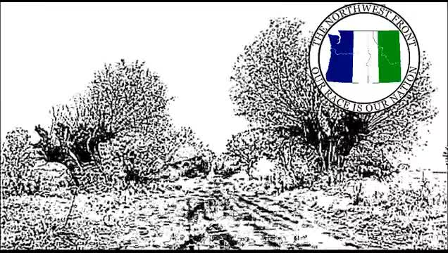 The Iron Dream - An Essay On National Socialism by Harold Covington