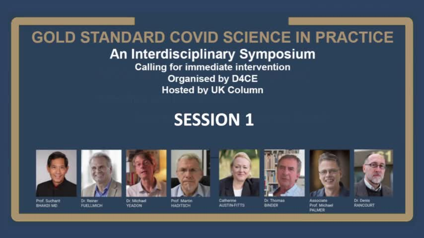 Doctors for Covid Ethics Symposium - Session 1: The False Pandemic