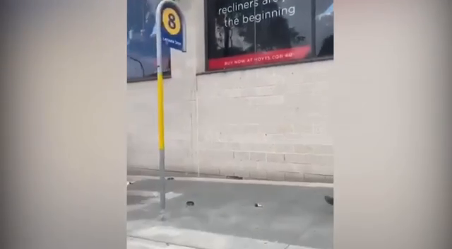 COVID ENFORCER PIGGERESS gets a knee to the face whilst her mate jumps up and down -FUCK THIS GAY WORLD
