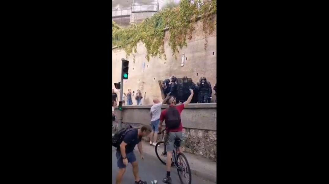 French jew system pigs brawling with anti-tyranny protesters.