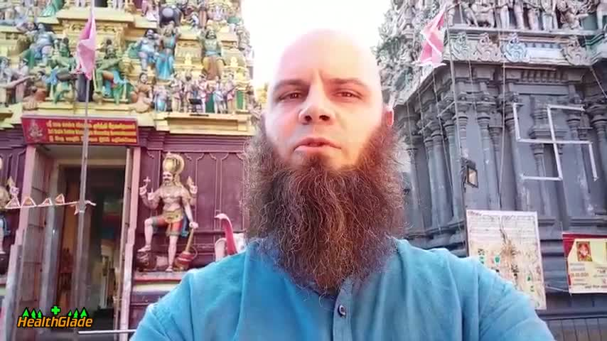 Flea Medications Cause Seizures in Dogs by HealthGlade