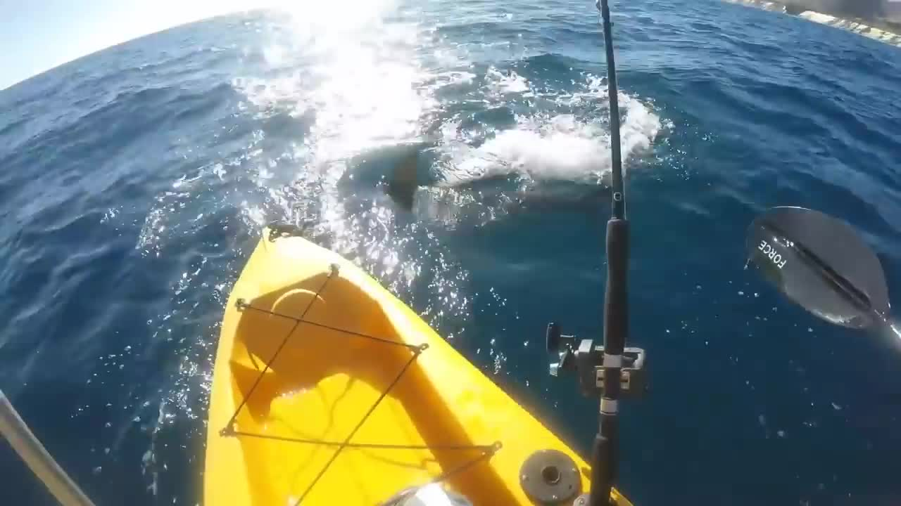 Why I don't deep sea fish from a kayak anymore