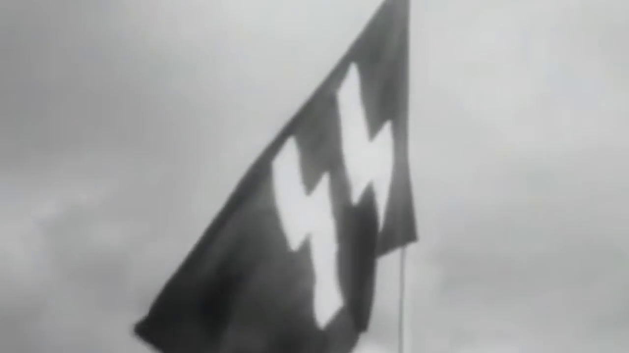 Waffen SS - They Fought for Aryans!