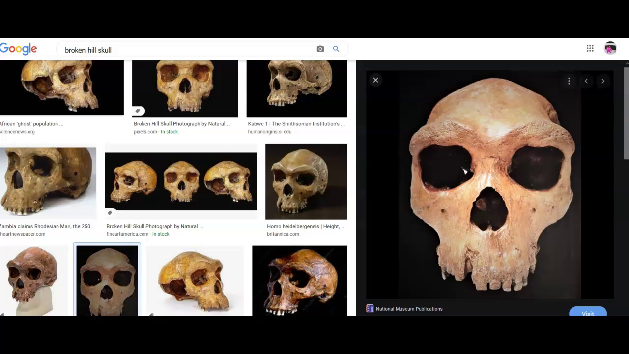 Africa's Mystery Apes PART 1