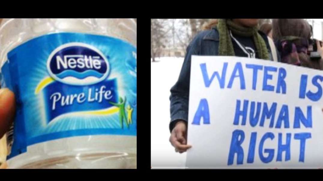 nestle ceo water is not a human right but a foodstuff