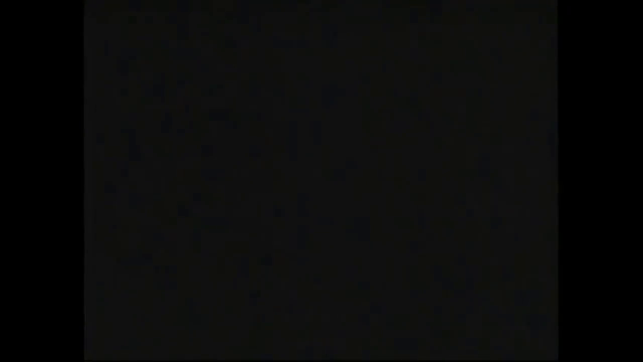 AVOF 35 - The Leuchter Report 1988 - with French subtitles
